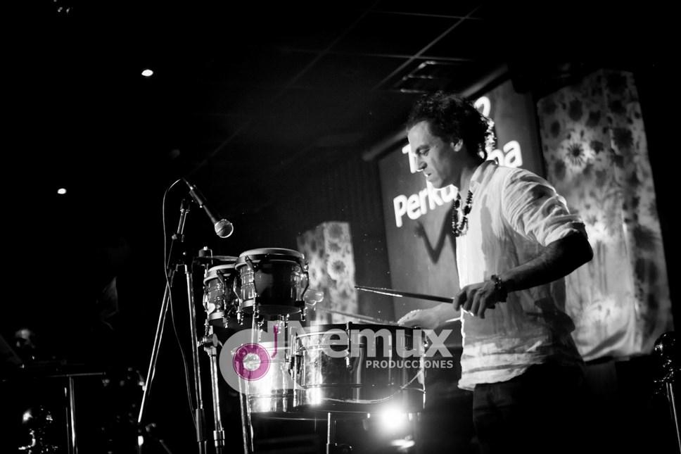 Percusionista en directo